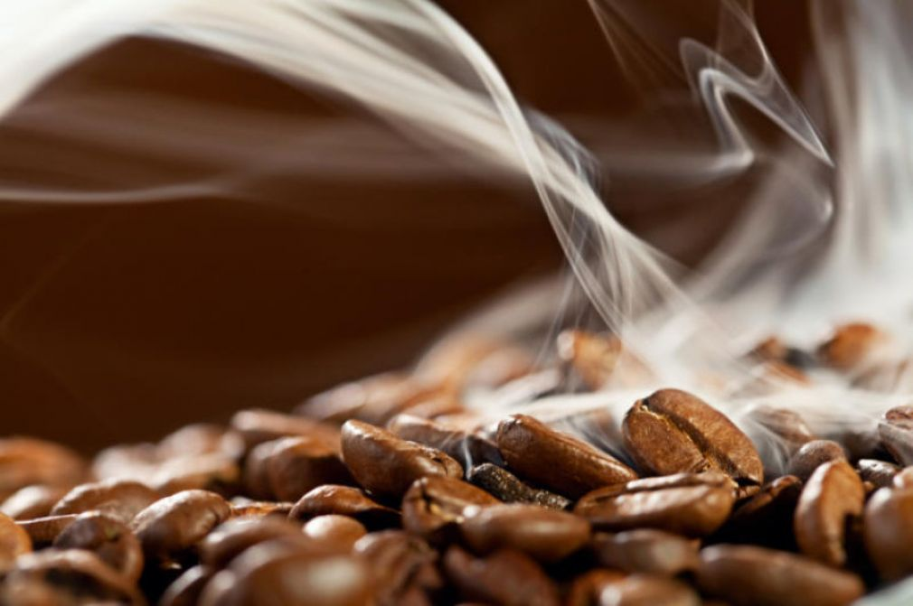 Which Coffees are Highest in Antioxidants?